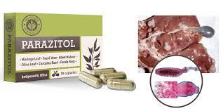 Parazitol - limpeza do corpo - como aplicar - criticas - onde comprar